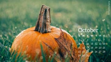 Pumpkin October Calendar Desktop Wallpaper