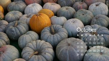 White Pumpkins and Orange Pumpkins October Calendar Desktop Wallpaper