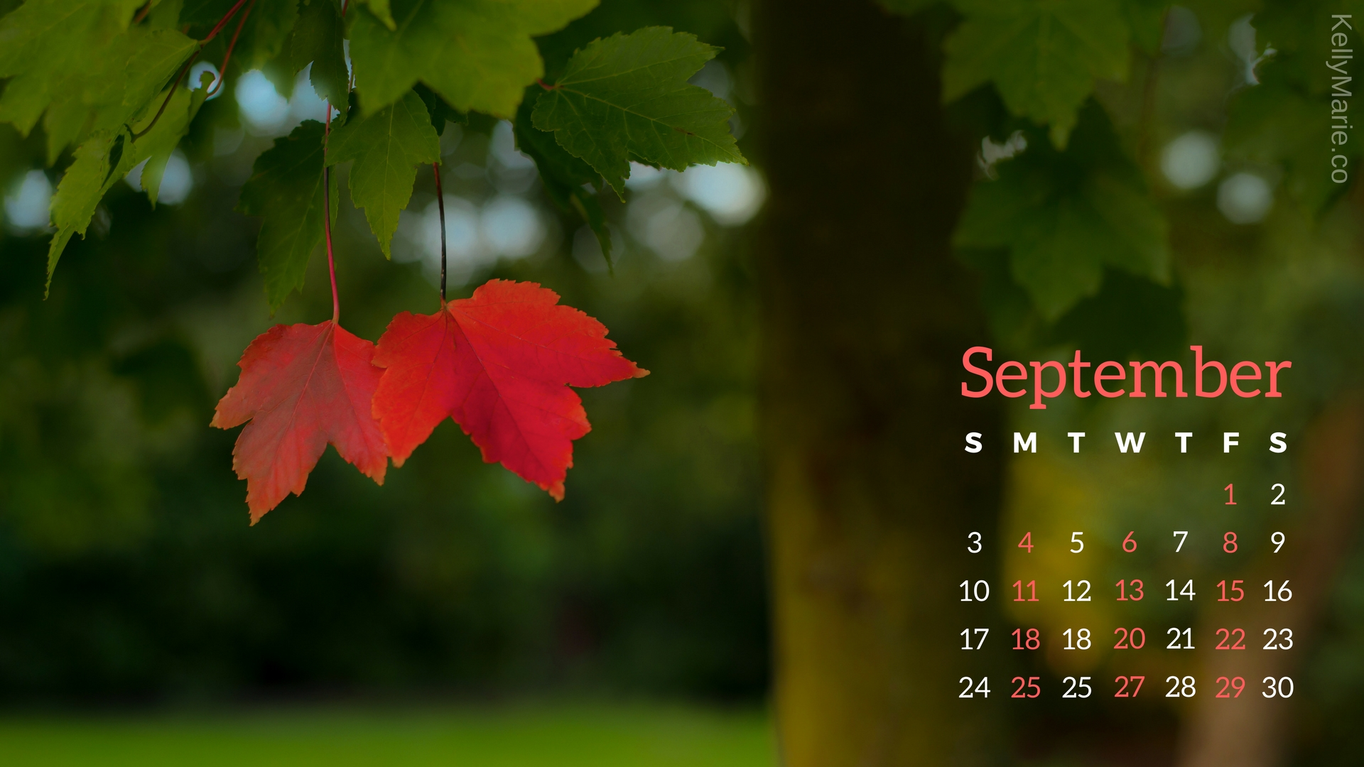September Desktop Wallpaper