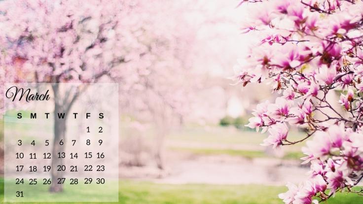 March 2019 Magnolia