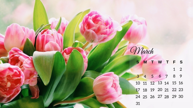 march 2019 Tulips